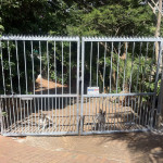 Double Electric Steel Swing Gates